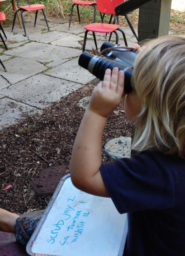 Ryder Chapman (age 3 in this photo) helping his family participate in the Great Backyard Bird Count.