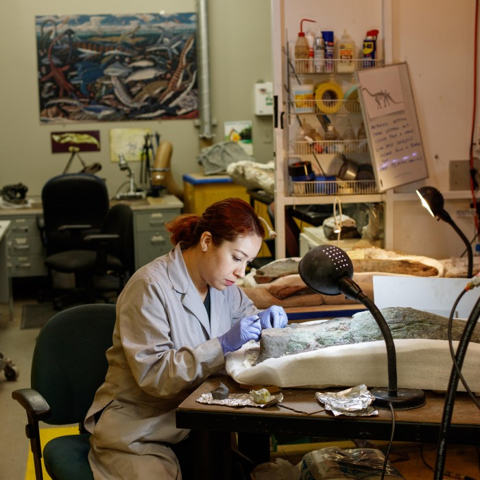woman working in dino lab