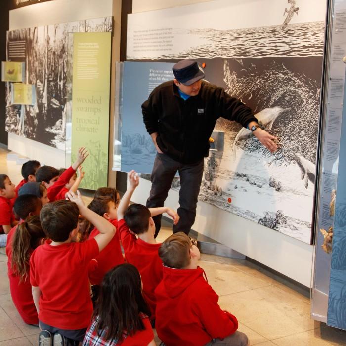 school group field trip gallery interpreter age of mammals