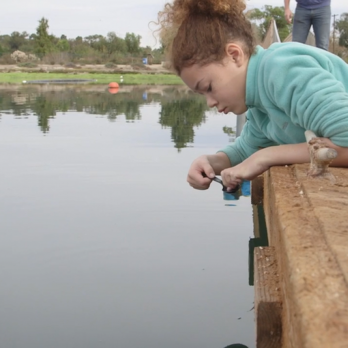Girl on pier lays down on stomach and uses plastic spoon to look for small crustaceans in water.
