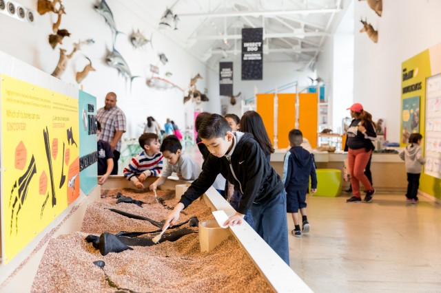 kids in paleo playzone discovery center