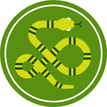 Icon of a snake to represent reptiles