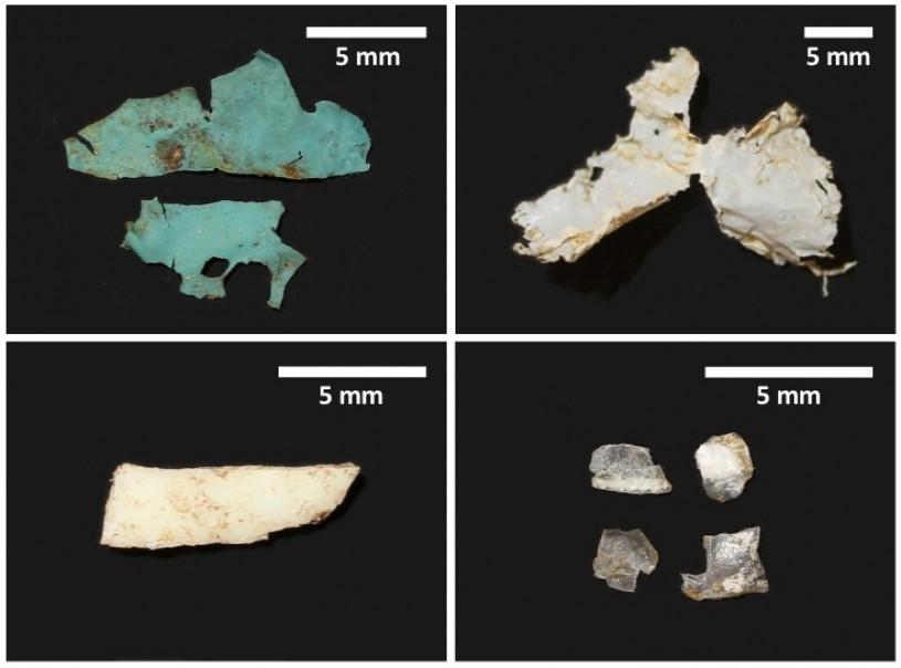 Plastics recovered from red-eared slider specimens